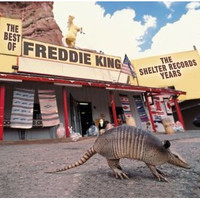 Freddie_king_best_of_the_shelter_te